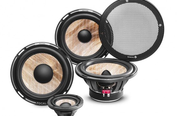 Focal Performance Expert Flax